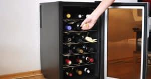 nevera de vino pequena